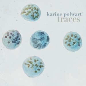 karine_polwart - traces
